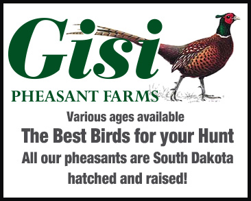 Gisi Pheasant Farms Square